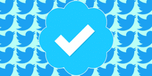 Getting Verified On Twitter